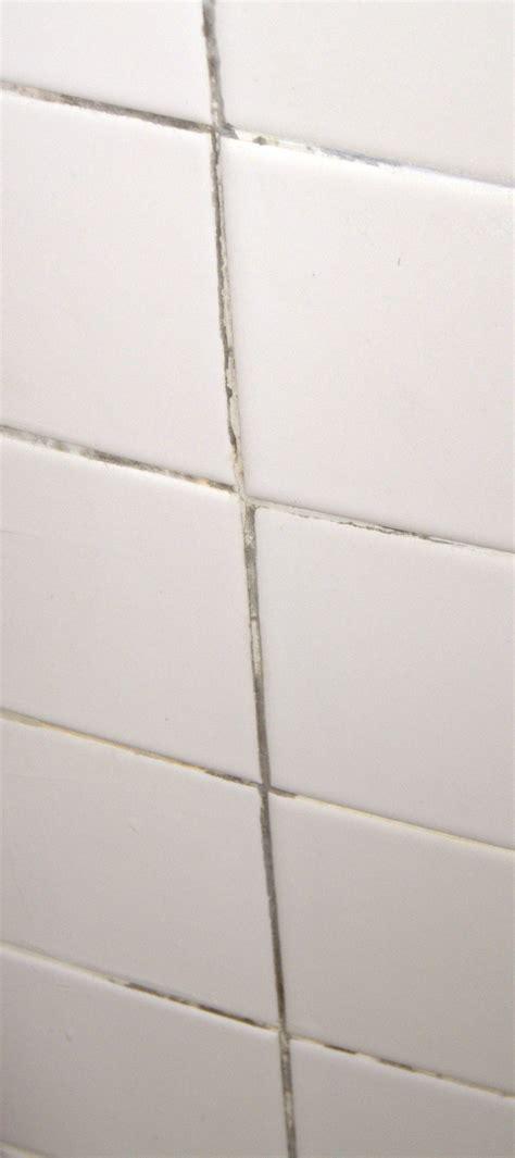 mold on bathroom tiles black mold on bathroom tiles with wonderful photo eyagci com