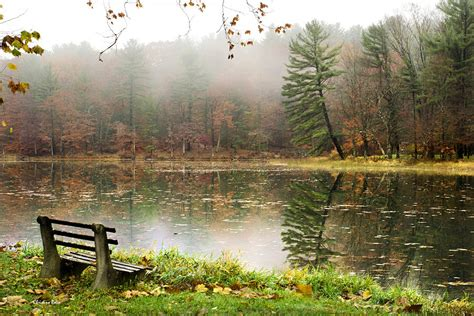 imagenes relajantes online relaxing autumn beauty landscape photograph by christina rollo