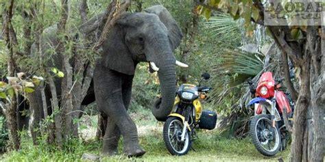 Motorradtouren Namibia by Motorradtour Afrika
