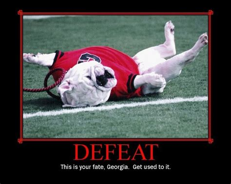 Georgia Bulldogs Memes - florida gators vs georgia football funnies pinterest