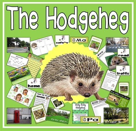 the hodgeheg the hodgeheg story teaching resources eyfs ks1 2 hedgehog road safety by hayleyhill teaching