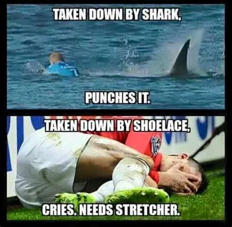 Shark Attack Meme - mick s shark attack memes the web finds the funny side