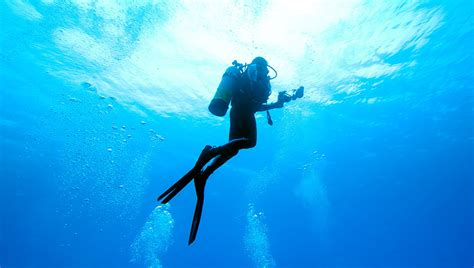 foto dive what this taught me about scuba diving safety