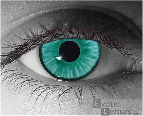 fda approved colored contacts 111 best images about makeup contact lenses on