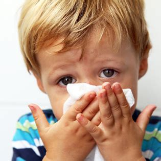 allergic to saliva what to do if your tot is allergic to pets what to expect