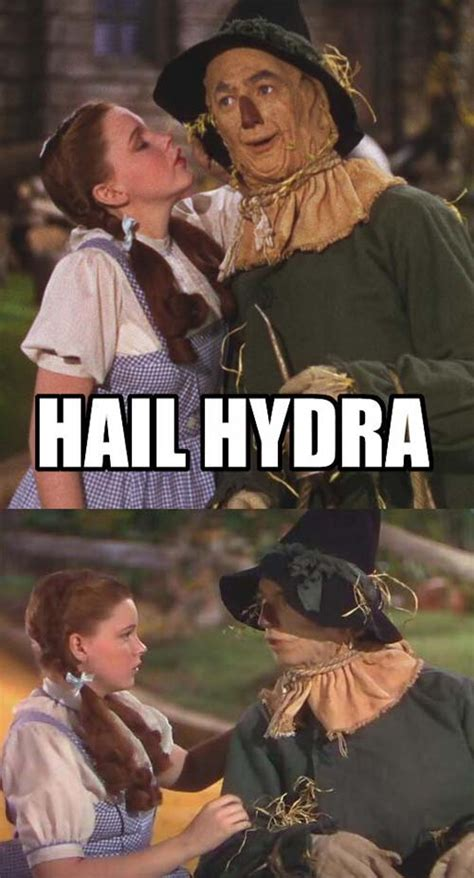 Hail Hydra Meme - the hail hydra meme is funny as hell the mind of shadow