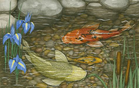 koi pond thediabeticspoon drawing realistic and stylish ramona maziarz to display detailed pen and ink drawings in