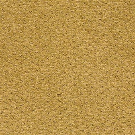 Golden On Carpet by Sweet N Simple Series Golden Fleece Empire Today