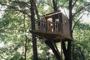 how to fasten a tree house to a tree without nailing into