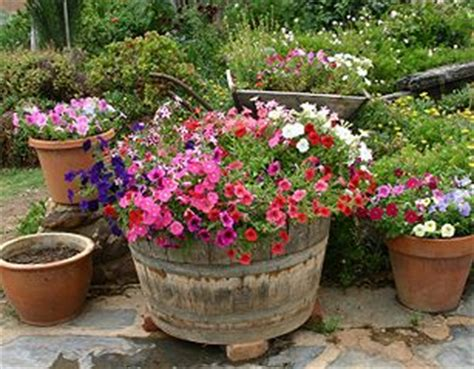 images of 6 flowers in pots outside flower pot arrangements outdoor flowers containers arrangement http www bcliving ca
