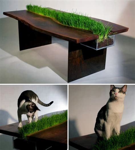 cat table reclaimed walnut table with cat grass planter hauspanther