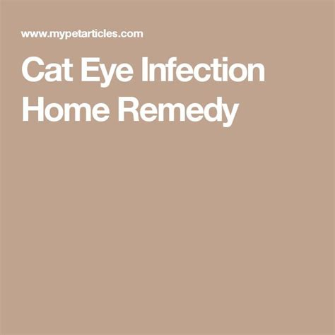eye infection home remedy 25 best ideas about eye infections on eye cyst home health remedies and