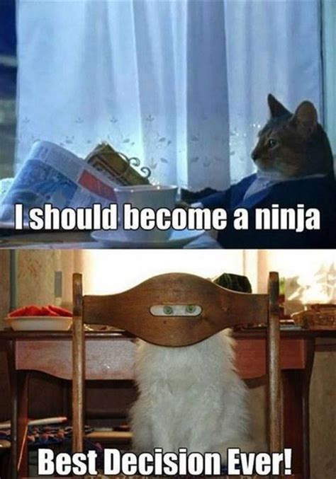 Ninja Meme - 25 most funny ninja meme pictures and photos that will