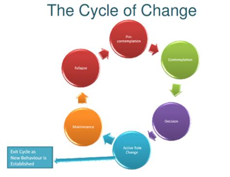 southampton directory | the cycle of change