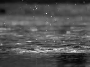 photo gratuite la pluie gouttes noir et blanc image