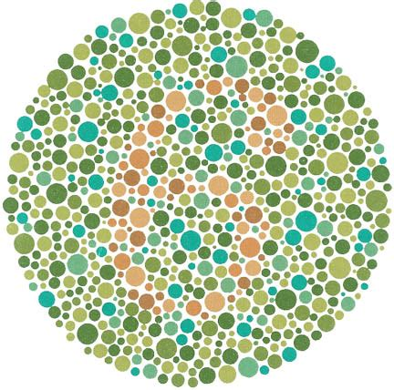 ishihara color vision test ishihara color blindness test the ishihara color