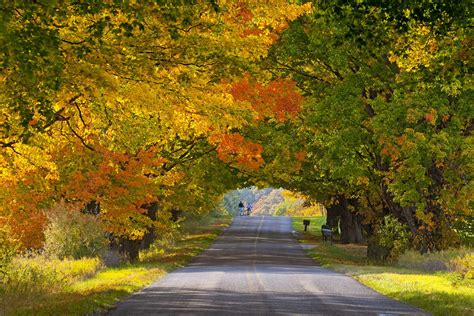 michigan fall colors less crowded fall foliage destinations you ve never