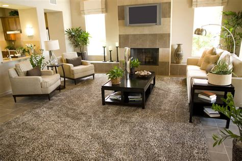 Cheap Living Room Plants Area Rugs Inspiring Cheap Large Area Rugs Cheap Large