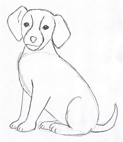 easy puppy drawing drawing step by step simple with sketching drawings