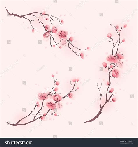 cherry blossom branch speed painting japanese cherry blossom branch painting www imgkid