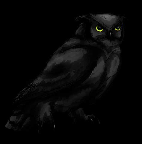 wallpaper black owl black owl by feralkyn on deviantart