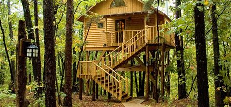 tree top cottages eureka springs eureka springs tree top cottages looking west picture of