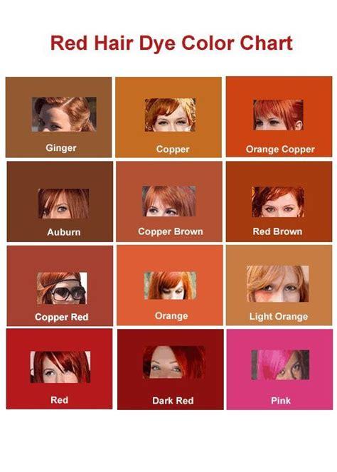 25 best ideas about hair color charts on pinterest 17 best ideas about hair color charts on pinterest hair