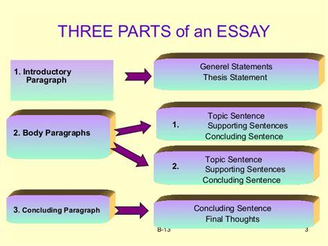 how to organize an essay video lesson transcript study com