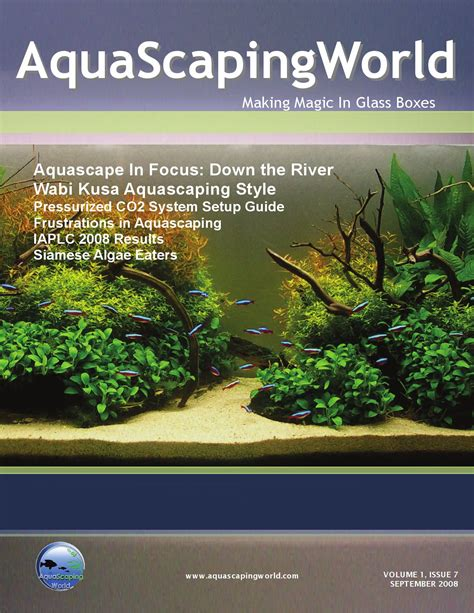 aquascaping magazine issuu aquascaping world magazine september 2009 by john n