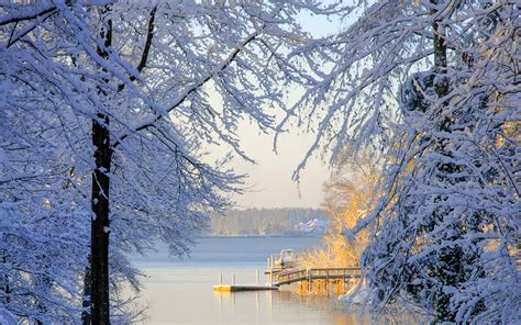 snow in south south carolina winter snow trees lake wallpaper