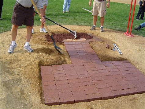 backyard pitching mound sports field mixtures speare seeds grass forage corn