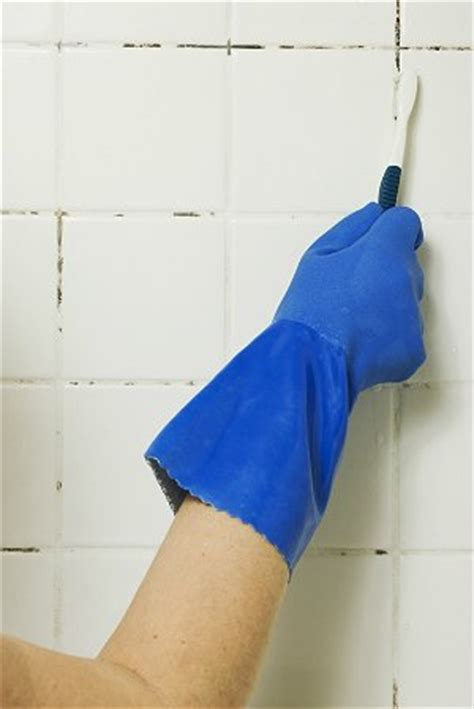 how to clean fungus in bathroom black mold in bathroom what to do about it bob vila