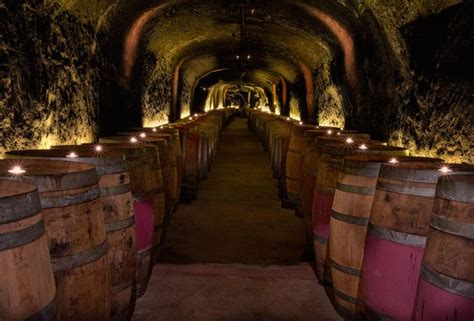 Dotto Caves Winery Tasting Room by Napa Valley Wineries The 7 Best Wine Caves In Napa