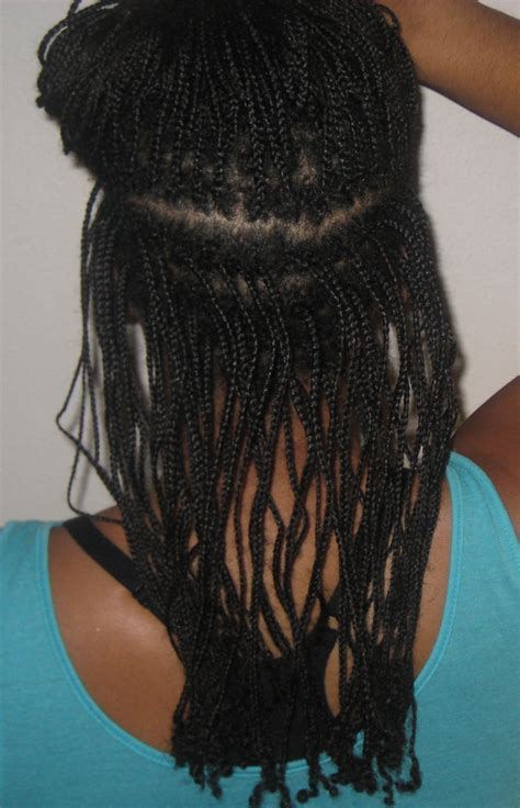 the mini braid method my mini braids update week 2 august 2013 the mini