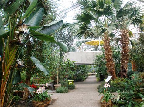 indoor fun matthaei botanical gardens conservatory ann