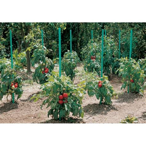 Tuteur à Tomate by Tuteur Tomate 224 R 233 Serve D Eau H 150 Cm Intermas