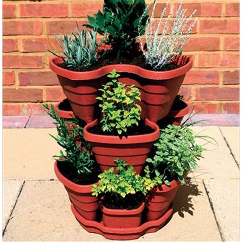 herb pots outdoor let s grow strawberry herb planter the garden factory