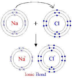 sodium fluoride diagram formation of ionic bonds and properties shais science