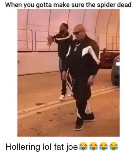 Fat Joe Meme - when you gotta make sure the spider dead hollering lol fat