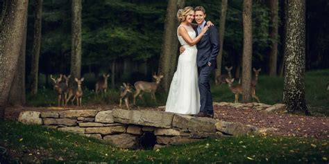 Best Wedding Photos Taken by The Best Wedding Photobombs Of 2014 Huffpost