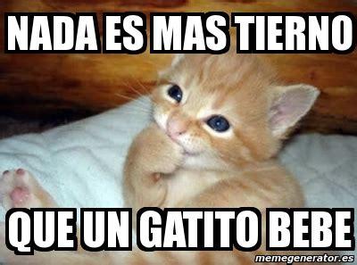 imagenes de memes bonitos meme personalizado nada es mas tierno que un gatito bebe