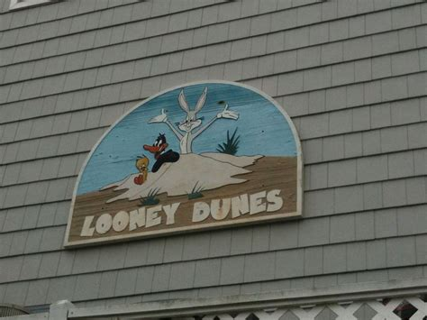 names for beach houses the 35 most amazingly punny beach house names the tonight show