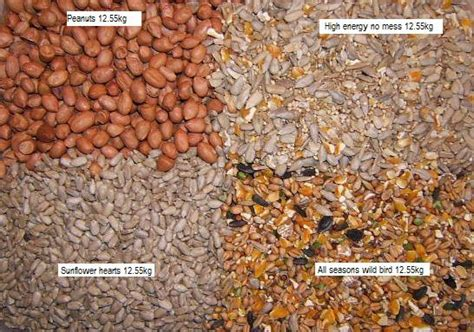 bird food variety bulk pack food4wildbirds