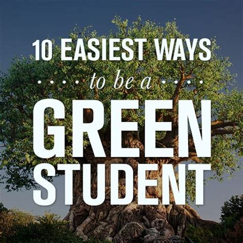 Osbourne Not Eco Friendly At Green by 17 Best Ideas About Sustainable Living On