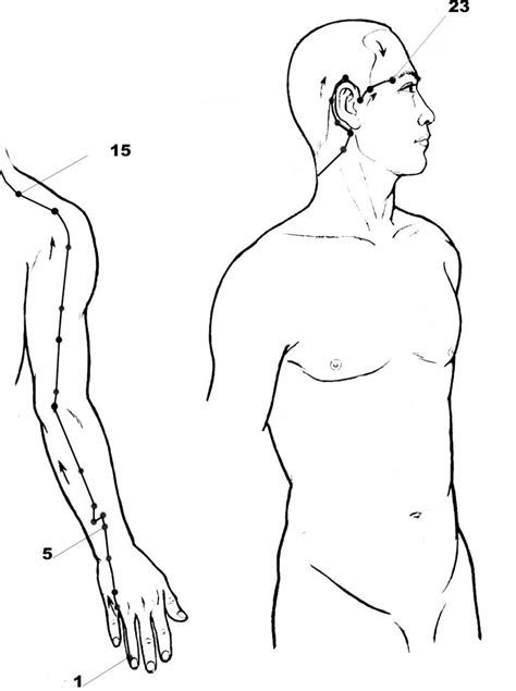 1000+ images about Pressure Points on Pinterest | Massage