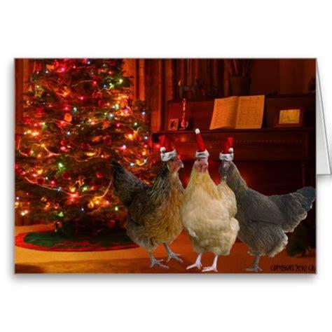 christmas chickens