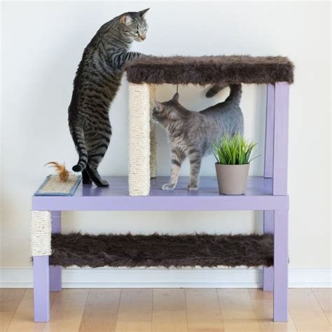 17 best ideas about cat beds on