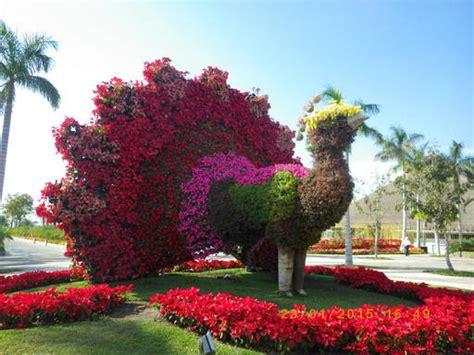 imagenes de jardines botanicos en mexico fotos de cuernavaca morelos mexico new style for 2016 2017