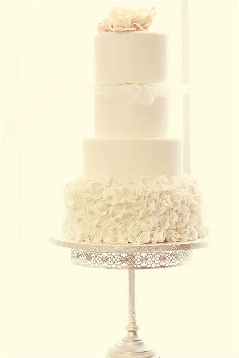 wedding anniversary ideas calgary 46 best vaughn photography images on