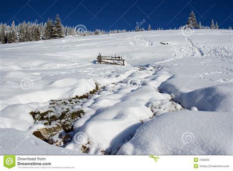 fotos rumania invierno paisaje del invierno en rumania fotos de archivo imagen